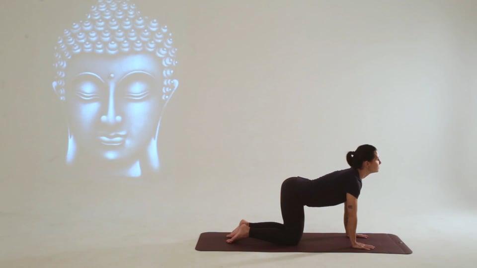 Vídeo 2: Clases Online de Yoga con posturas o asanas para mejorar tu bienestar en general